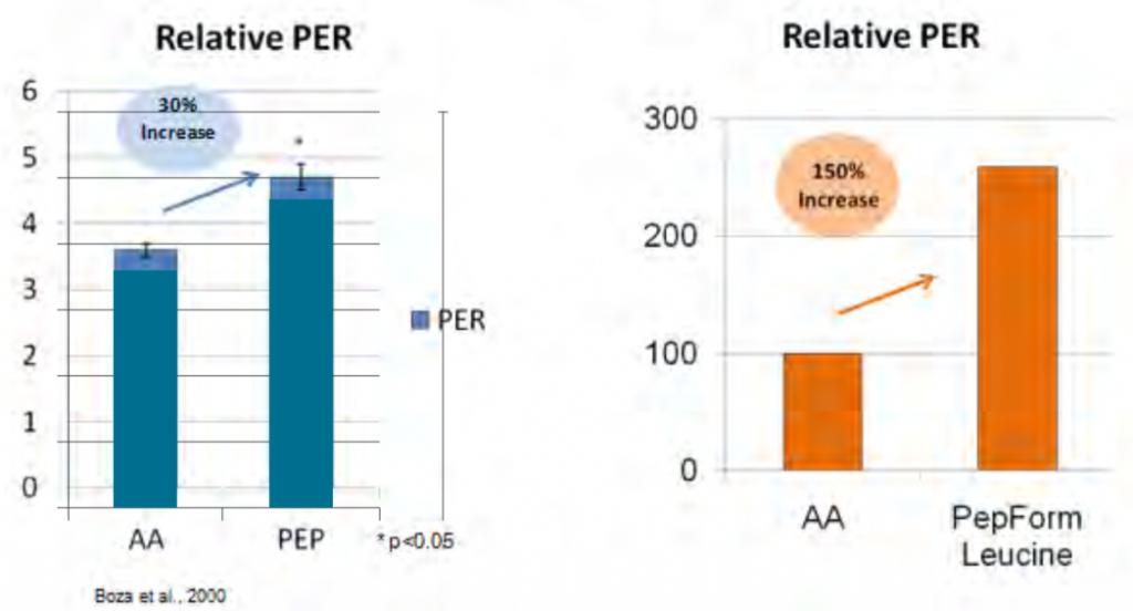Studi pepform grafico indice assorbimento aminoacidi